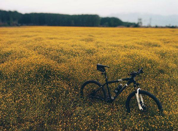Bike Dartmoor